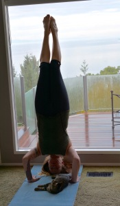 Tripod Headstand - Salamba Sirasana II (I think I deserve extra points for not getting distracted by the cat)